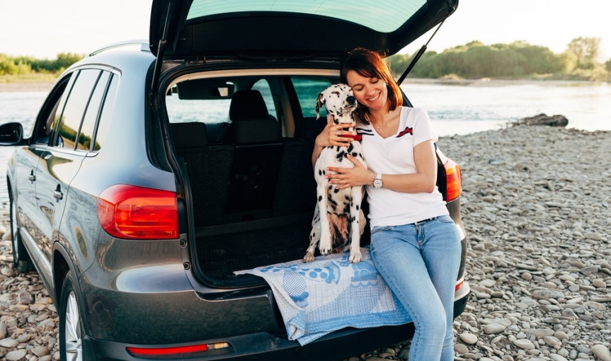5 Tips for Smooth Sailing When Traveling in the Car With Your Canine
