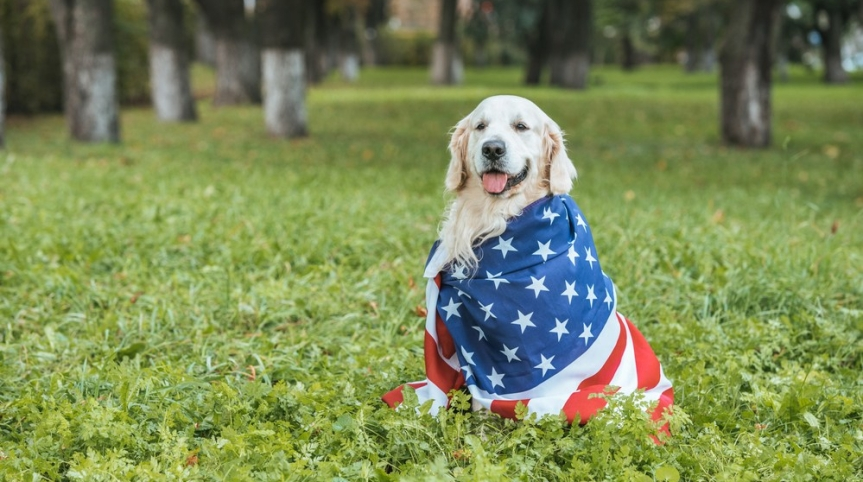 Presidential Pups with the Most Unique Names